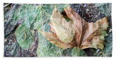 Beach Towel featuring the photograph Autumn Leaves by Dubi Roman