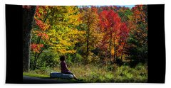 Autumn Leaves In The Catskill Mountains Beach Sheet