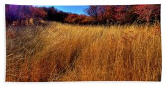 Beach Towel featuring the photograph Autumn Path by David Patterson