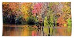 Beach Sheet featuring the photograph Autumn Reflections At Alum Creek by Angela Murdock