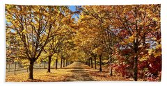 Autumn Road Beach Towel
