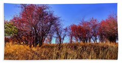 Beach Towel featuring the photograph Autumn Sun by David Patterson
