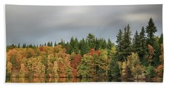 Autumn Tree Reflections Beach Towel