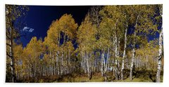 Beach Sheet featuring the photograph Autumn Walk In The Woods by James BO Insogna