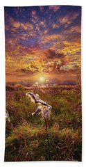 Beach Towel featuring the photograph Autumn Wings by Phil Koch