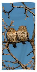 Beach Towel featuring the photograph B36 by Joshua Able's Wildlife