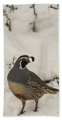 Beach Towel featuring the photograph B45 by Joshua Able's Wildlife