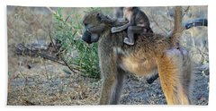 Baboon And Baby Beach Towel