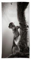 Baby Baboon Beach Towel