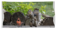 Backyard Squirrel Working Out With Trainer Beach Towel