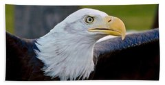 Beach Sheet featuring the photograph Bald Eagle by Dan Miller
