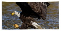 Beach Towel featuring the photograph Bald Eagle Fishing On The James River by Lori Coleman