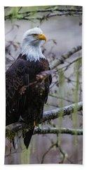 Bald Eagle In Rain Forest Beach Towel