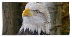 Bald Eagle Portrait Beach Towel