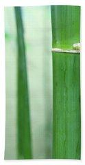 Bamboo 0312 Beach Towel