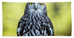 Beach Towel featuring the photograph Barking Owl by Rob D Imagery