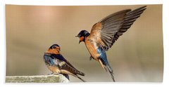 Barn Swallow Conversation Beach Towel