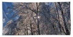 Bass Lake Trees Frozen Beach Towel