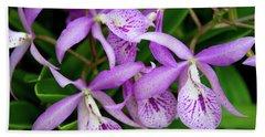 Bc Maikai 'louise' Orchid Beach Sheet