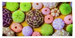 Beautiful Colorful Sea Urchins Beach Towel