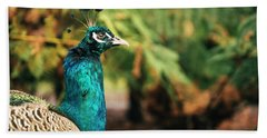 Beautiful Colourful Peacock Outdoors In The Daytime. Beach Towel