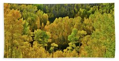 Beautiful Fall Colors At Woods Lake State Wildlife Area Beach Towel