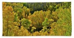 Beautiful Fall Colors At Woods Lake State Wildlife Area Beach Sheet