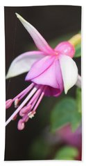 Beautiful Fuchsia Beach Towel