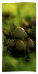 Beauty Of Fungus Beach Towel