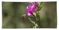 Bee Flying Towards Ultra Violet Texas Ranger Flower Beach Towel