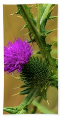 Between The Flower And The Thorn Beach Towel
