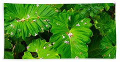 Big Green Leaves Beach Towel