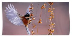 Beach Towel featuring the photograph Bird Eating On The Fly by Top Wallpapers