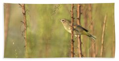 Bird On Branch Beach Towel