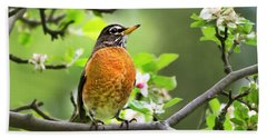 Birds - American Robin - Nature's Alarm Clock Beach Towel
