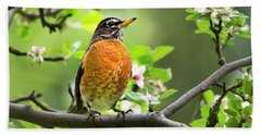 Birds - American Robin - Nature's Alarm Clock Beach Sheet