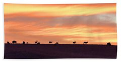 Bison Elk Panorama Beach Sheet