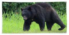 Black Bear Crossing Beach Sheet