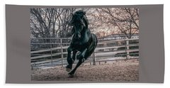 Black Stallion Cantering Beach Sheet