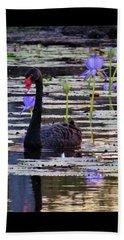 Black Swan On Lake Beach Towel
