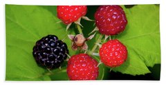 Blackberries Beach Towel