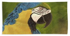 Blue And Gold Mccaw Beach Towel
