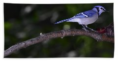 Blue Jay Beach Sheet