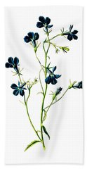 Blue Lobelia Flower Beach Towel