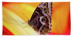 Blue Morpho Red And Yellow Beach Towel