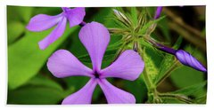 Blue Phlox Beach Towel