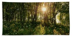 Blue Ridge Parkway - Last Of Summers Light, North Carolina Beach Towel