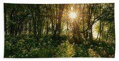 Blue Ridge Parkway - Last Of Summers Light, North Carolina Beach Towel