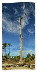 Blue Skies And Broken Branches Beach Sheet