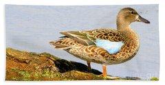 Blue-winged Teal Female Duck Beach Towel